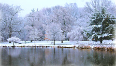 Intense Winter Landscape (chantsign) Tags: colorful intense landscape tree winter snow hue snowing park reflection water pond snowcovered