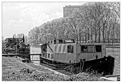 Résidence à quai (Jean-Marie Lison) Tags: eos80d bruxelles anderlecht digueducanal bateau péniche noiretblanc nb