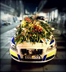 Flower power... (Papa Razzi1) Tags: 8988 2017 099365 sweden stockholm policecar flowers covered volvo v70 terrorattack respect love gratitude