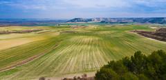 ¡Qué poco aprietan los verdes! (Jesus_l) Tags: europa españa valladolid sanmartíndevalvení camposdecastilla jesúsl