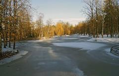 DSC02532_DxO (igor_shumega) Tags: зима природа пейзаж парк прогулки озеро отдых