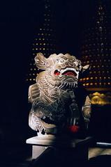 慈聖宮_12 (Taiwan's Riccardo) Tags: 2017 taiwan 135film negative ps fujifilmrdpiii plustek8200i rolleiq35t rolleilens hft vario zoom apogon 3890mmf2856 台北市 大稻埕 慈聖宮