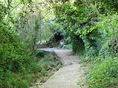 Ψίνθος (Psinthos.Net) Tags: ψίνθοσ psinthos spring april απρίλησ απρίλιοσ άνοιξη φύση εξοχή nature countryside afternoon απόγευμα απόγευμαάνοιξησ ανοιξιάτικοαπόγευμα psinthosvalley valley κοιλάδα κοιλάδαψίνθου κοιλάδαψίνθοσ rocks βράχοι βράχια μονοπάτι path pavement paved λιθόστρωτο πρασινάδα greenery βάτοσ βάτοι βάτα brambles bramble wildivy άγριοσκισσόσ φύλλα leaves ρυάκι πέτρεσ rivulet stones πικροδάφνη oleander tree πλάτανοσ planetree planetrees trees δέντρα πλατάνια πλάτανοι πλατάνοι greens χόρτα