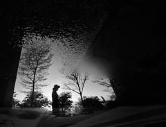 F_47A9502-1-BW-3-Canon 5DIII-Canon16-35mm-May Lee 廖藹淳 (May-margy) Tags: maymargy bw 黑白 人像 剪影 水灘 枯木 倒影 建築物 building 門拱 arch 花崗岩 地坪 街拍 streetviewphotographytaiwan 線條造型與光影 linesformandlightandshadows 天馬行空鏡頭的異想世界 mylensandmyimagination 心象意象與影像 naturalcoincidencethrumylens 模糊 散景 blur bokeh humaningeometry 幾何線條 新北市 台灣 中華民國 taiwan repofchina f47a95021bw3 過客 portrait silhouette waterpuddle reflection granite floor trees newtaipeicity canon5diii canon1635mm maylee廖藹淳