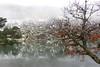 La Laguna Negra ( Soria ) (Jonás Garca) Tags: soria lagunanegra urbion naturaleza nive invierno winter lago hielo heladofrio paisaje landscape canon conmicanon eos700d amateur montaña mountain senderismo
