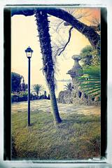 Palm Beach (macplatti) Tags: xt10 xf1855mmf284rlmois mystery strange fairytales maerchen stone stein sculpture lantern laterne lagomaggiore grass gras green orange aliceinwonderworld wizzardofoz wunderwelt italy ita