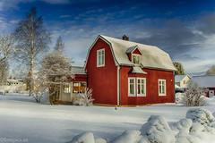 Hos Sammy (johan.bergenstrahle) Tags: 2017 finepics architecture arkitektur building byggnad hdr house hus march mars morgon morning sverige sweden vinter vännäs winter