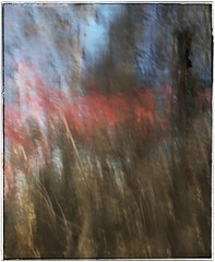 Untitled (GR167) Tags: blur impressionism iphoneography iphoneart verticalpan slowshutterapp snapseed nc fall autumn