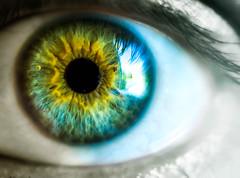 Through the Lens (danielledufour430) Tags: eye iris lens human face macro colorful cornea sclera beautiful creative sonya6000 vision view humaneye