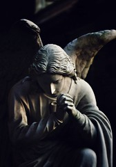 Watching over me (kecobo) Tags: beautiful encourage wings nc duplin blackwhite blackandwhite street 80mm a500 alpha sony praying pray angels northcarolina sonya500 duplinwinery rosehill sonyalpha