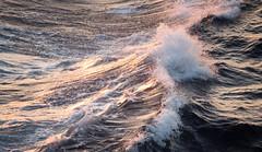 - Wave - (TessAnjel) Tags: photo photography sea boat sky paysage sunset sunrise soleil bateau mer wave vague water eau horizon ciel nuage cloud sun