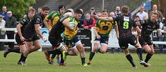 BW0Y2928 (Steve Karpa Photography) Tags: henleyhawks henley rugby rugbyunion game sport competition outdoorsport redruth