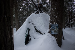 Sauvage (Juslalonde) Tags: tipi native canada camping winter snow forest tree