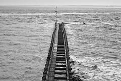 z (timmytimtim75) Tags: vlissingen zeeland netherlands sea waves pier monochrome