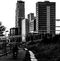 _DSC6366-3 (durr-architect) Tags: almere city black white train hig rise