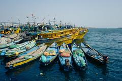 Vizag Harbor (naren-photography) Tags: vizag visakhapatnam harbor fishing trawler ribbonfish shrimp yellow blue ricoh gr ii street india
