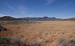DSC03608.jpg (taarhaug) Tags: parker arizona unitedstates us