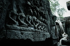 20150501_R6551_GRD4_KH (*Leiss) Tags: 2015 taprohm cambodia kh grd4 gr 28mm digital