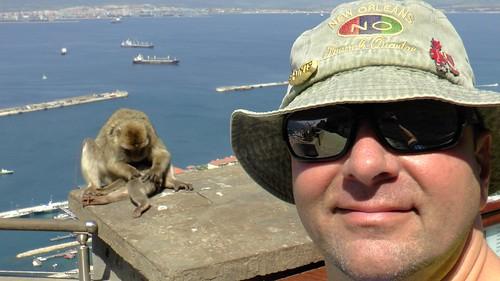 Affenfels auf Gibraltar