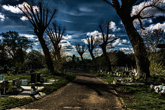 Thriller (stevefge) Tags: cemetary kensalgreen london reflectyourworld dark spooky graveyard graves