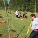 Highland_Renaissance_Tree_Planting_Event_2017 (44)