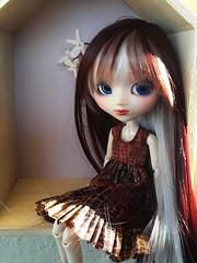 New wig (Lunalila1) Tags: doll groove junplaning pullip custom custo akai han outfit costura handmade clothes dress wig leeke corte peluquería pared pelu