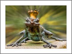 Froschkönig (Frog Prince) (alfred.hausberger) Tags: frosch frog froschkönig badfüssing kurpark