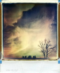 (er_code_blue) Tags: 600 analog polaroidweek impossibleproject film integral instant polaroid