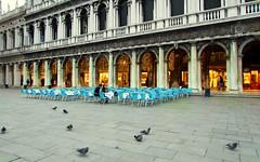 Venezia, aperitivo al Florian ... (Augusta Onida) Tags: venezia veneto venice italia italy caffèflorianvenezia patrimoniounesco heritage piazzasanmarco romantic coppia couple amore love bar
