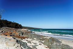 20170414-05-Hazards Beach (Roger T Wong) Tags: 2017 australia freycinet freycinetnationalpark hazardsbeach np nationalpark rogertwong sel2470z sony2470 sonya7ii sonyalpha7ii sonyfe2470mmf4zaosscarlzeissvariotessart sonyilce7m2 tasmania beach bushwalk camp clouds hike ocean outdoors sand sea sky tramp trek walk