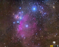 Horsehead nebula (StarryEarth) Tags: orion nebula nebulosa cabeza caballo galactica horsehead