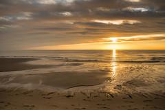 Sunrise-San Felipe (imageseekertoo (Wendy Elliott)) Tags: baja gulfofcalifornia beachsunrise mexico sanfelipe sanfelipesunrise sunrise wendyelliott wendyelliottphotography wintertrip2016to2017