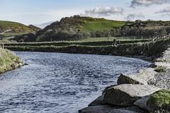 DSC_4147 (Kaloyan Cholakov) Tags: aberystwyth walk sunset sheep people landscape sea river animals