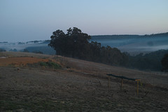20170428 Looking NW before the dawn (pbowdidge) Tags: bridgetown southwest westernaustralia sunridge predawn mist cloud