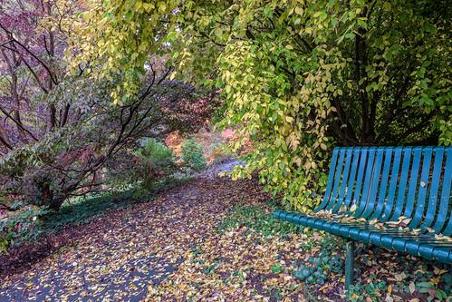 Pirianda Gardens - 6 by r reeve, on Flickr