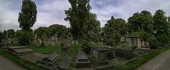 Panorama of Kensal Green Cemetery (IanAWood) Tags: kensalgreencemetery kensalgreen london londonsmagnificentsevenvictoriancemeteries londoncemeteries graveart headstones bringoutyourdead theartofremembrance androidphotographer cameraphonephotography mobilesnaps capturedonp9 huaweip9 editedinsnapseed notwalkingwithmynikon