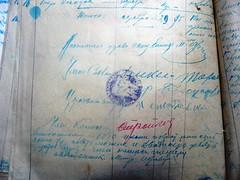 Николаевская P1160601