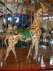 OH Mansfield - Carousel (scottamus) Tags: ohio animal ride seat carousel giraffe merrygoround attraction mansfield richlandcounty richlandcarrouselpark