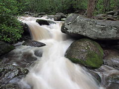 - Great Smoky Mountains National Park - Roaring Fork (David L. Black) Tags: nationalparks greatsmokymountainsnationalpark