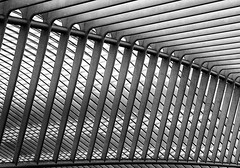 Calatrava lines VI (jefvandenhoute) Tags: light lines belgium belgique shapes belgi railwaystation calatrava luik lige lightplay guillemins