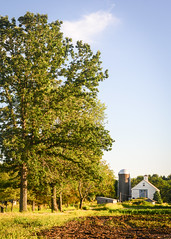 Farm (Corey Templeton) Tags: trees summer tree nature field barn rural landscape nikon farm massachusetts farming scenic newengland concord 50mmf18d d600 2013