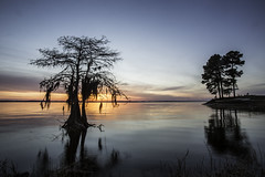 Sabine Parish Tourism (Toledo Bend) Tags: voyage road travel usa lake tourism louisiana tour many sightseeing scenic panoramic explore journey trips traveling excursions tours picturesque touring wanderings treks expeditions explorations takeatrip