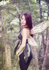 (handpainted-heart) Tags: trees summer portrait tree nature girl fashion female photoshop photography wings wing inspired tinkerbell victoria lynn fairy tori redhair