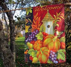 WELCOME AUTUMN..... (Daisy.Sue) Tags: bird apple pumpkin flag birdhouse autumnleaves autumncolors grapes pear autumn2012