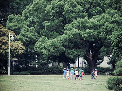 Yamashita Park Yokohama (Kay's...) Tags: japan finepix  fujifilm yokohama  ricohgr yamashitapark   f200exr
