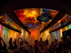 Chihuly / MBAM (Mad Blike) Tags: sculpture chihuly museum design artist colours couleurs muse fisheye dalechihuly verre artiste montrealmuseumoffinearts musedesbeauxartsdemontral verresouffl lumixgfisheye8f35 olympusem5