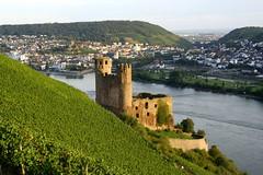 Burg Ehrenfels from above (Leoniedas) Tags: river germany deutschland europe hessen vineyards fluss rhine rhein burg rheingau rdesheim rheinlandpfalz bingen assmannshausen ehrenfels weinstcke