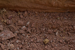 blo RBGB yard elo XX20131002a6873.jpg (rachelgreenbelt) Tags: nature basement soil dirt clay constructionsite materials addition buildingall renovationconstructiondestruction metalrocksoil buildingpartitions