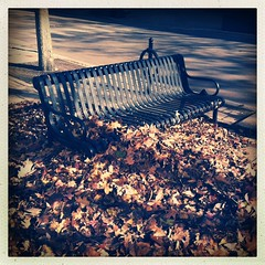 (Joie de Vivre) Tags: shadow brown bench leaf many pile iphone hipstamatic