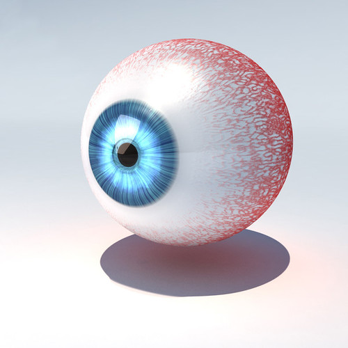animated_human_eye_model